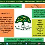 Bioblitz 2020 Backyard Edition