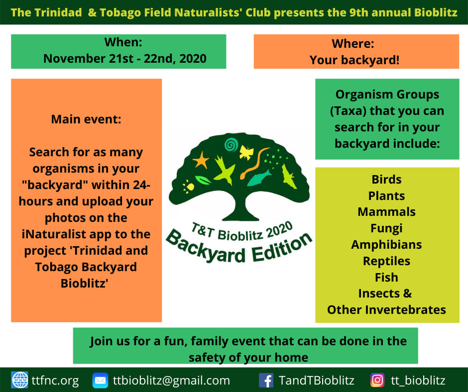 Trinidad & Tobago Bioblitz Goes Virtual